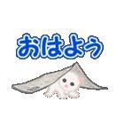 箱にゃんこ(個別スタンプ:1)