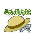 箱にゃんこ(個別スタンプ:2)