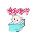 箱にゃんこ(個別スタンプ:7)