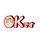 箱にゃんこ(個別スタンプ:9)