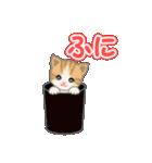箱にゃんこ(個別スタンプ:13)