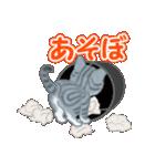 箱にゃんこ(個別スタンプ:15)