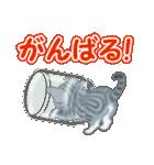 箱にゃんこ(個別スタンプ:19)