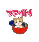 箱にゃんこ(個別スタンプ:20)