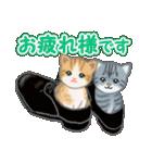 箱にゃんこ(個別スタンプ:21)
