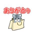 箱にゃんこ(個別スタンプ:22)