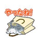箱にゃんこ(個別スタンプ:23)