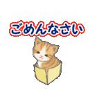箱にゃんこ(個別スタンプ:24)