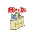 箱にゃんこ(個別スタンプ:25)