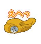 箱にゃんこ(個別スタンプ:27)