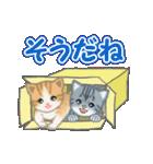 箱にゃんこ(個別スタンプ:32)