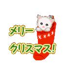 箱にゃんこ(個別スタンプ:36)