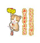 箱にゃんこ(個別スタンプ:38)