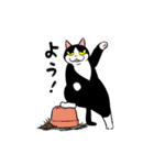 おはぎ(動)9(個別スタンプ:07)