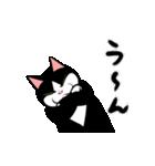 おはぎ(動)9(個別スタンプ:09)