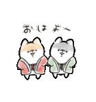 ほんわかしばいぬ<冬>(個別スタンプ:01)