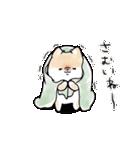 ほんわかしばいぬ<冬>(個別スタンプ:03)