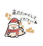 ほんわかしばいぬ<冬>(個別スタンプ:04)