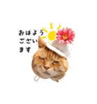 あまもっちゃん(個別スタンプ:01)