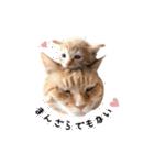 あまもっちゃん(個別スタンプ:04)