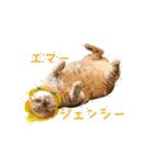 あまもっちゃん(個別スタンプ:07)