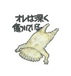 ギョーザ男repaint(個別スタンプ:34)