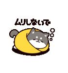 お返事シバイヌくん3(個別スタンプ:06)