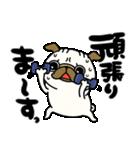 ♡年末年始のパグさん♡(個別スタンプ:25)