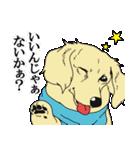兄弟犬 公式スタンプ(個別スタンプ:02)