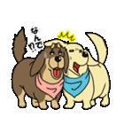兄弟犬 公式スタンプ(個別スタンプ:07)