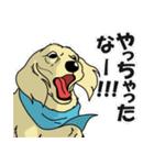 兄弟犬 公式スタンプ(個別スタンプ:09)