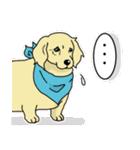 兄弟犬 公式スタンプ(個別スタンプ:10)
