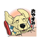 兄弟犬 公式スタンプ(個別スタンプ:12)