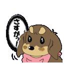兄弟犬 公式スタンプ(個別スタンプ:15)