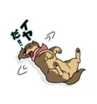 兄弟犬 公式スタンプ(個別スタンプ:21)