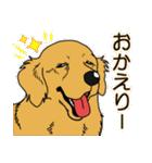 兄弟犬 公式スタンプ(個別スタンプ:31)