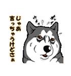 兄弟犬 公式スタンプ(個別スタンプ:32)