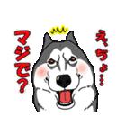 兄弟犬 公式スタンプ(個別スタンプ:33)