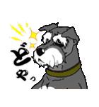 兄弟犬 公式スタンプ(個別スタンプ:37)