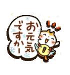 【訂正版】柴犬「まるちゃん」年末年始(個別スタンプ:05)