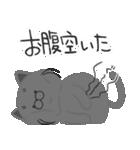 4匹の猫にあれこれ言ってもらうスタンプ 2(個別スタンプ:07)