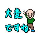 優しいおじいちゃんのデカ文字(個別スタンプ:29)