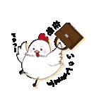 ウインファーマひよこ&おんどりちゃん(個別スタンプ:22)