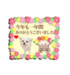 あけおめチワワ&黒猫・猪☆動く!(個別スタンプ:01)
