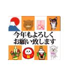 あけおめチワワ&黒猫・猪☆動く!(個別スタンプ:12)