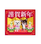 あけおめチワワ&黒猫・猪☆動く!(個別スタンプ:16)