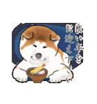 秋田犬の年末年始スタンプ(個別スタンプ:1)