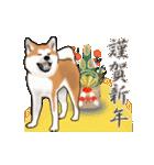 秋田犬の年末年始スタンプ(個別スタンプ:2)