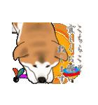 秋田犬の年末年始スタンプ(個別スタンプ:8)