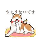 秋田犬の年末年始スタンプ(個別スタンプ:15)
